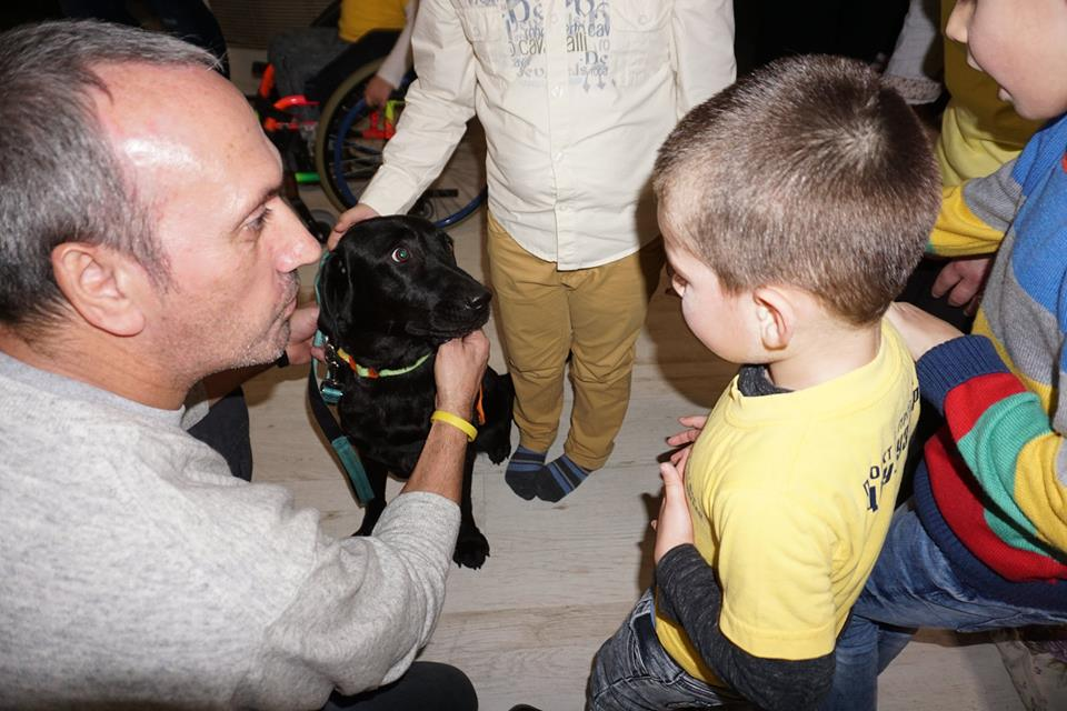 Лабрадорката Алекс и невероятните деца от ДМСГД Бузовград